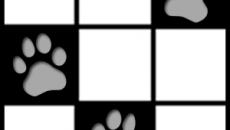 piano tiles 222