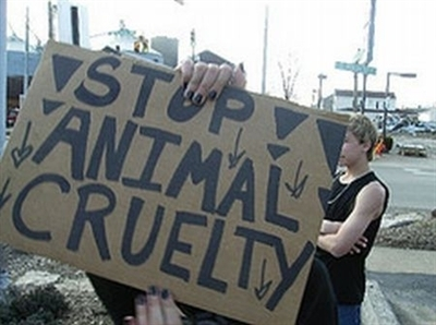 Stop-Animal-Cruelty-animal-rights-5325341-400-298